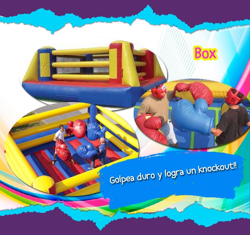 Inflables Para Adultos Alabio Fiestas Infantiles Puebla